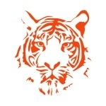 Naklejka welurowa na ścianę Głowa tygrysa W10