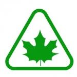 Naklejka samochodowa Zielony listek na folii magnetycznej A6