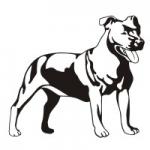Naklejka dekoracyjna Pies M25