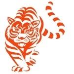 Naklejka na ścianę Tygrys M11