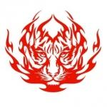 Szablon dekoracyjny Ognisty tygrys S2
