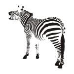 Naklejka na ścianę do pokoju Zebra M14