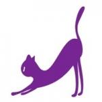 Naklejka welurowa na ścianę Kot W3