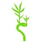 Naklejka dekoracyjna Bambus M5