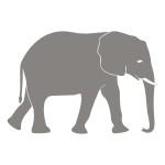 Naklejka welurowa Słoń W3
