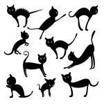 Welurowe naklejki na ścianę Zestaw kotów W5