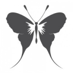 Naklejka na ścianę Motyl M13